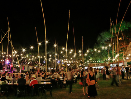 Darwin Festival  - Festival park