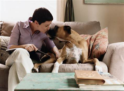 Save money mortgage pet sitting